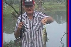 pond_bass