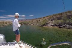 Bass-Fishing-Lake-Mohave-Arizona