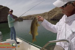 Lake-Mohave-Bass-Fishing-Anafi-Minn-Kota-Columbia-04-16-2020-Copy
