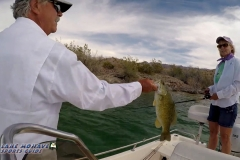 Tired-of-the-Ski-Slopes-for-the-Season_-Try-Arizona-Bass-Fishing