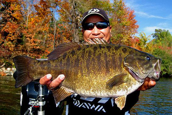 Toyota sharelunker season begins october 1 texas fishing for Texas bass fishing guides
