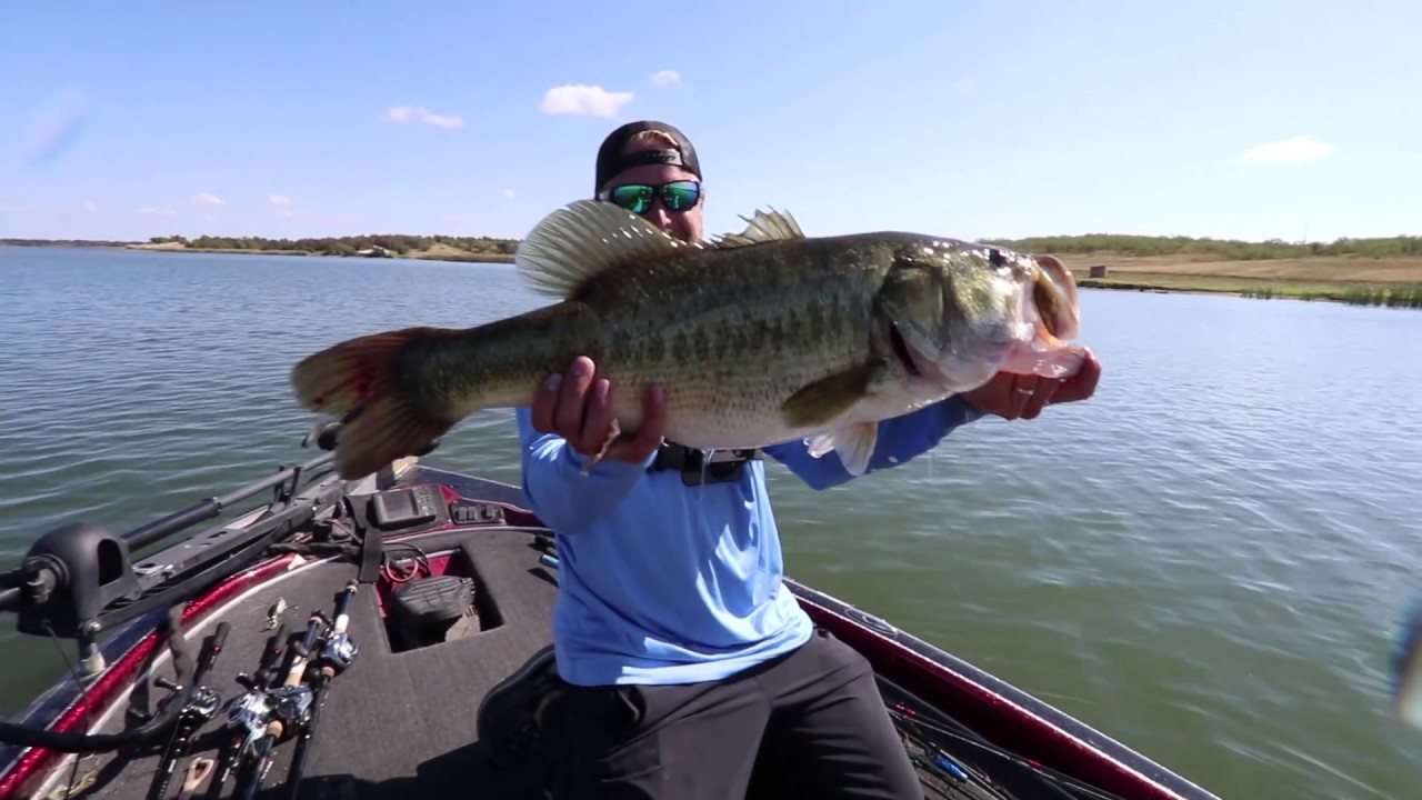 Lake Conroe Texas Bass Fishing Report December 2018 Texas Fishing Guide